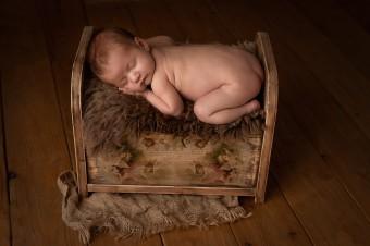815. Novorodenci